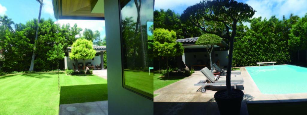 庭の左側が芝生、右側がプール。プールと芝生の境に東屋があります